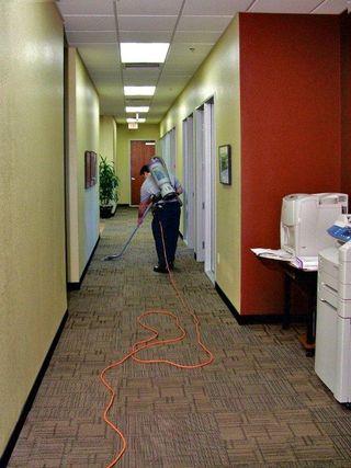 vacuum to remove allergens