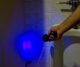 blacklight inspection helps cleaning and disinfection